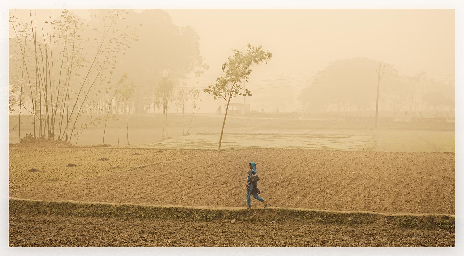 Across the fields, Rangpor, Bangladesh