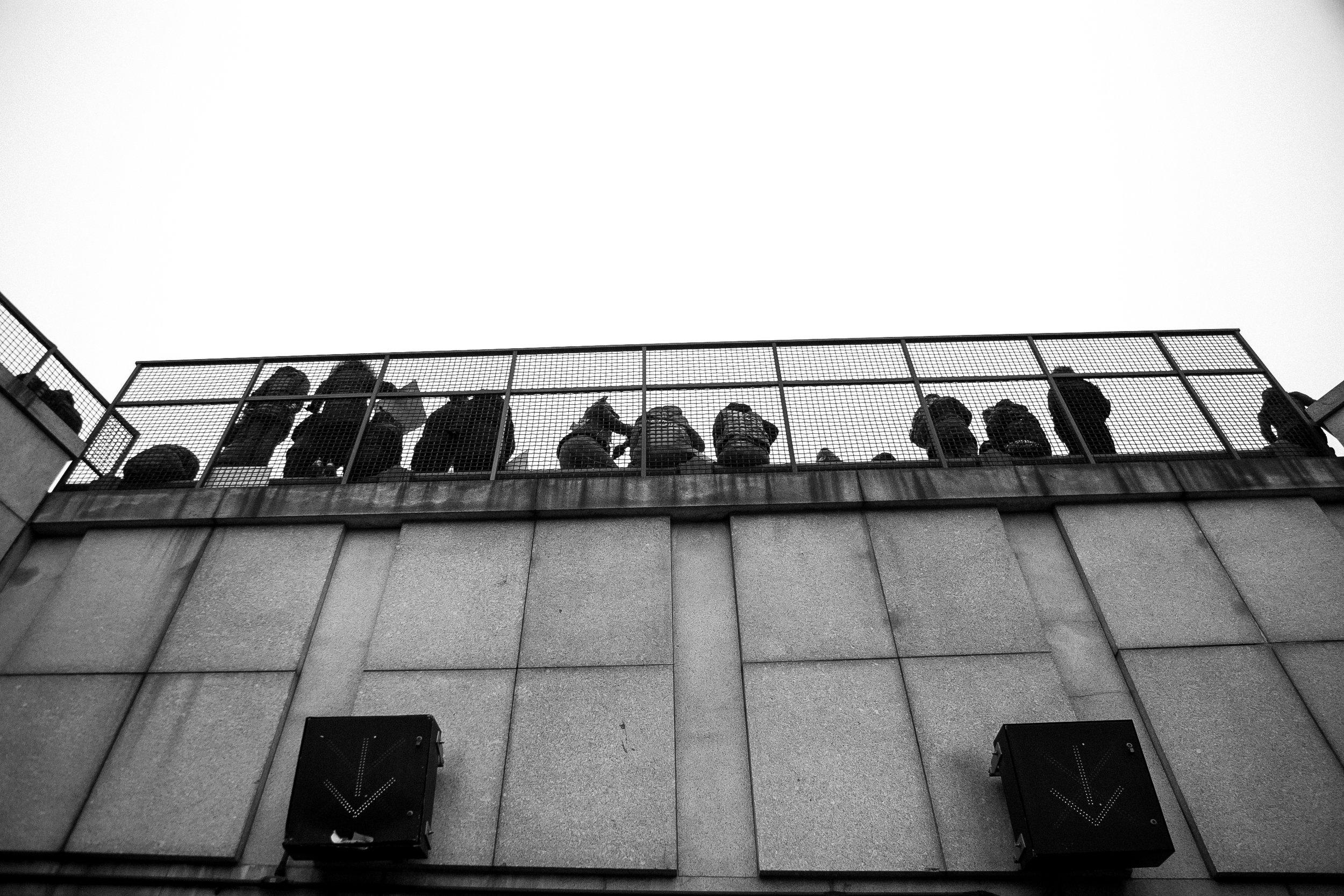 Women's March-123.jpg