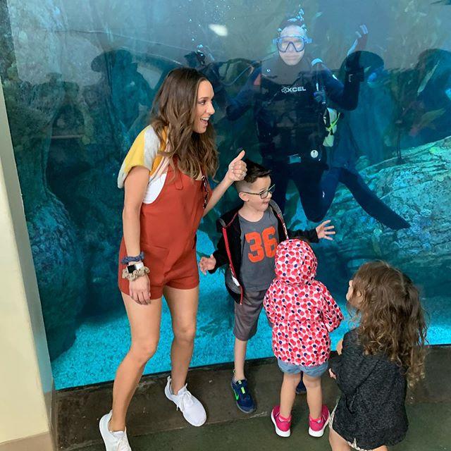Aquarium 🐬