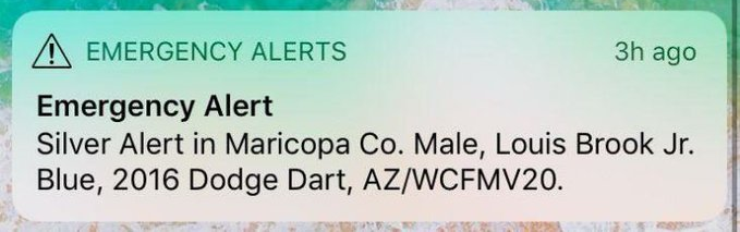 Silver-Alert.png