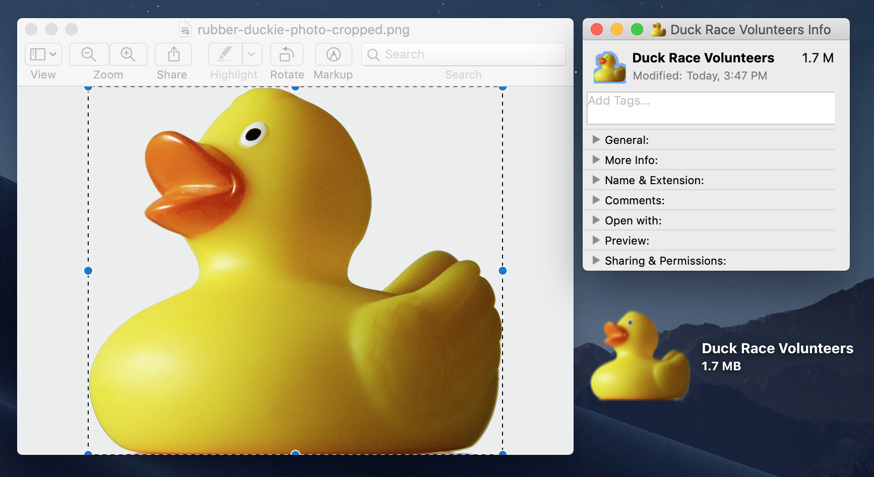 custom-icons-duck.png