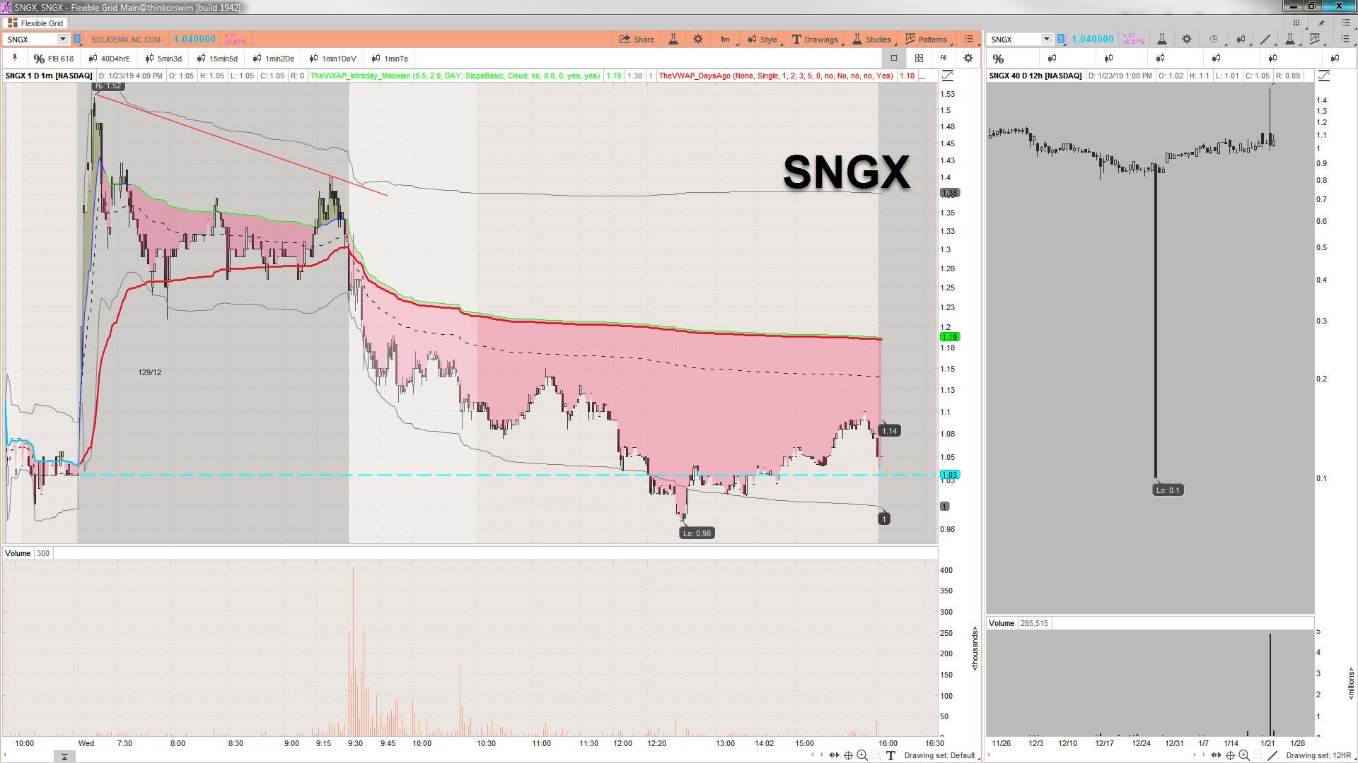 2019-01-23_16-13-58 SNGX.jpg