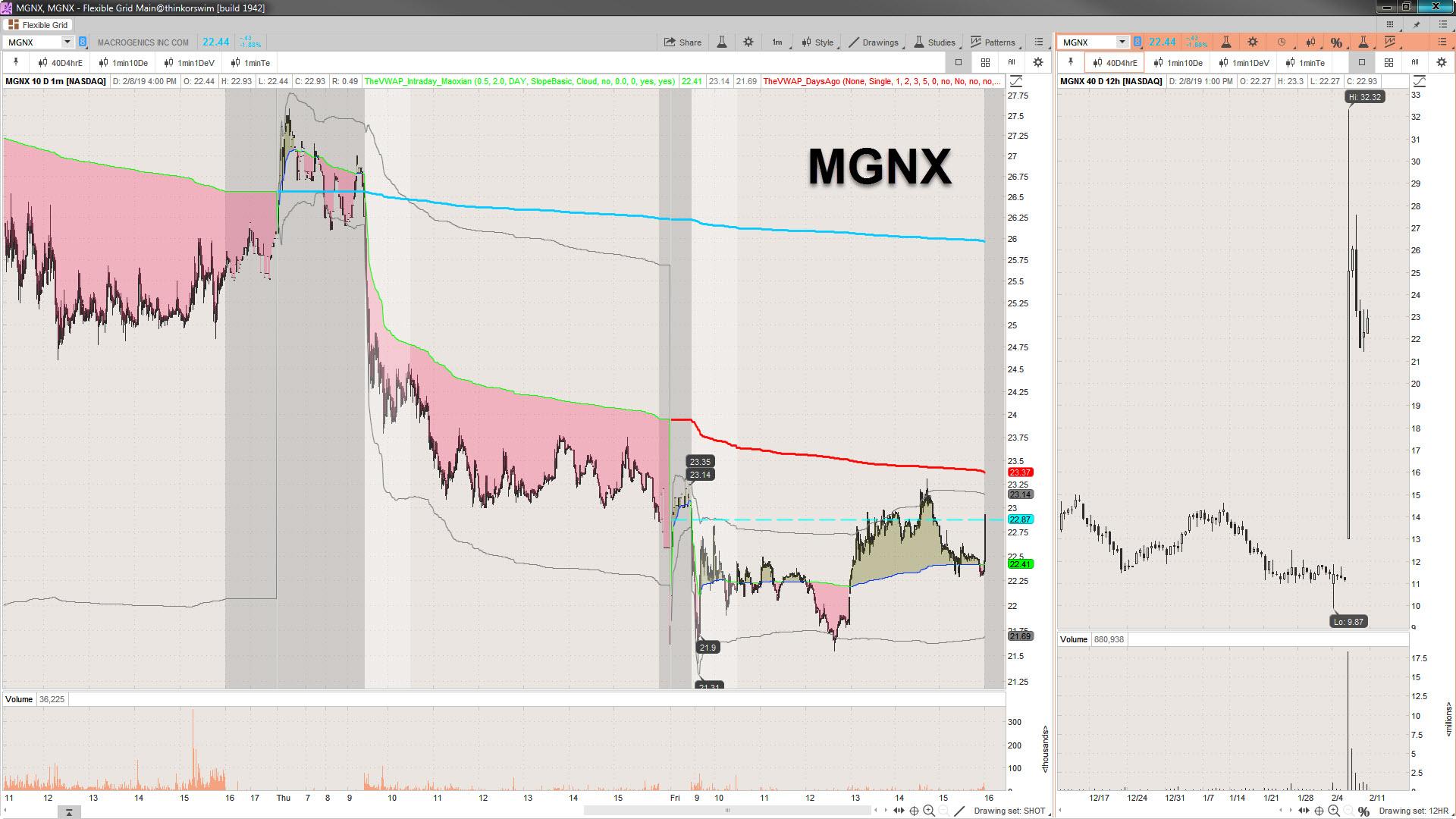 2019-02-08_16-09-23 MGNX.jpg