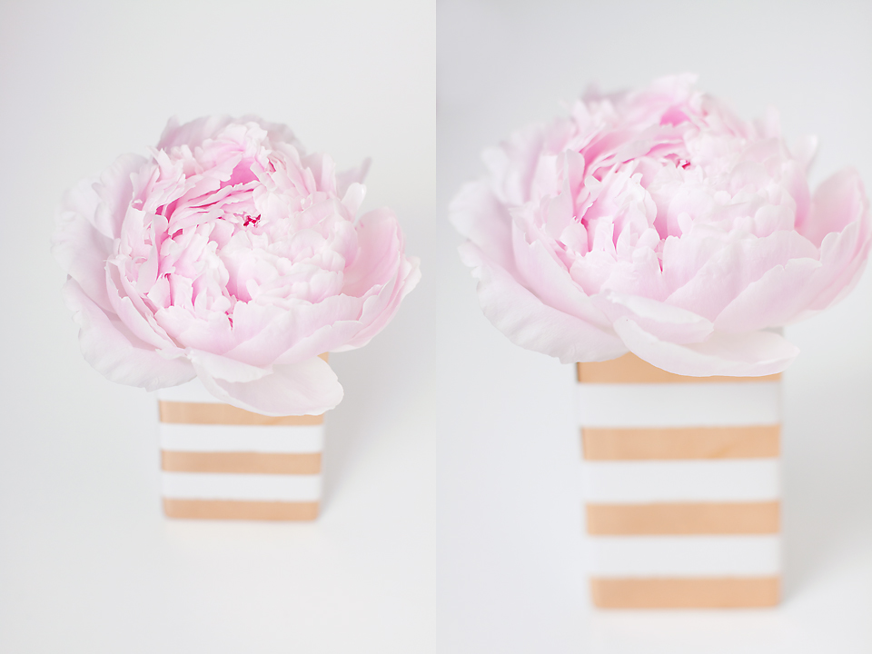 Gold and white stripes pair perfectly with my favorite blooms, the peony.