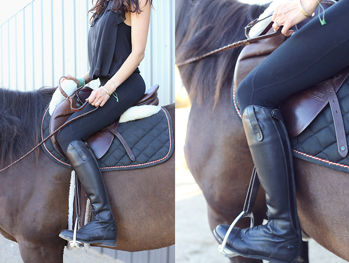 Tahnee's riding essentials.
