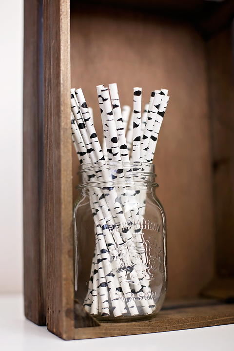 Birch bark paper straws - Greenmunch