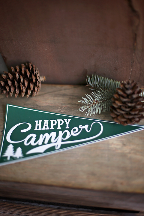 Happy Camper Flags by  Sunshine Parties