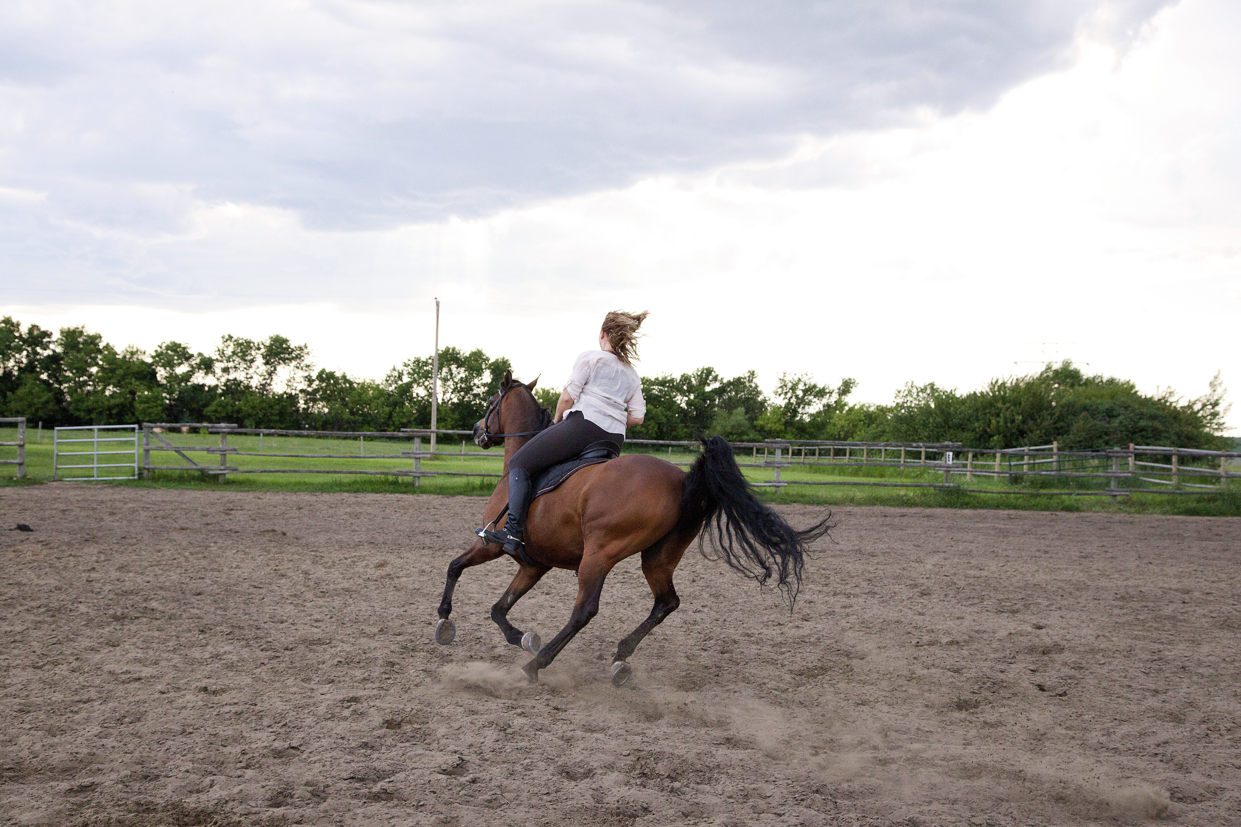 WIth the slightest (i.e. we couldn't see them) changes in physical communication, Jenn directed Charley through several different patterns and gaits. They practice dressage.
