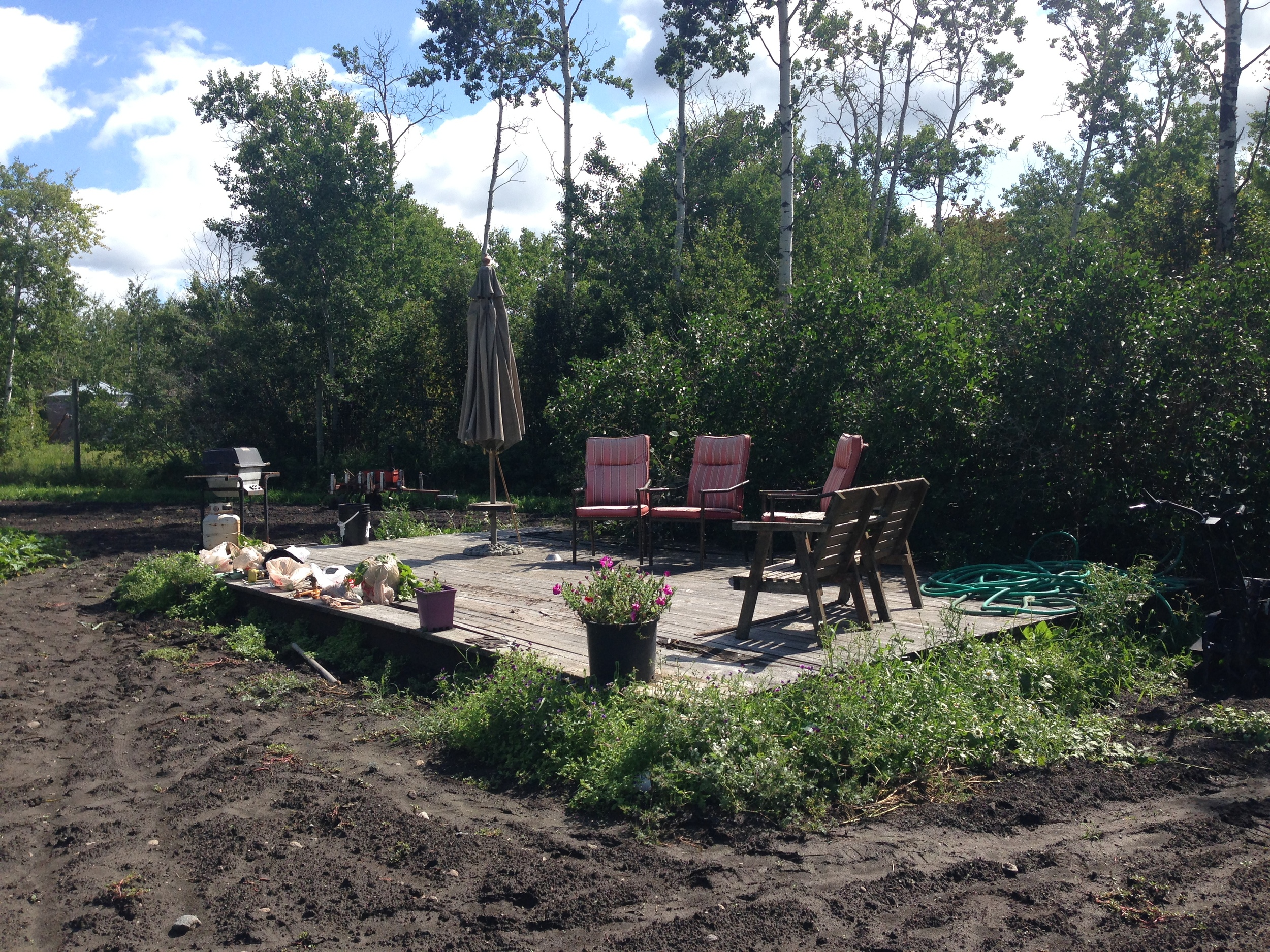 The perfect little space to eat lunch and relax whilst enjoying the garden and the surrounding forest.