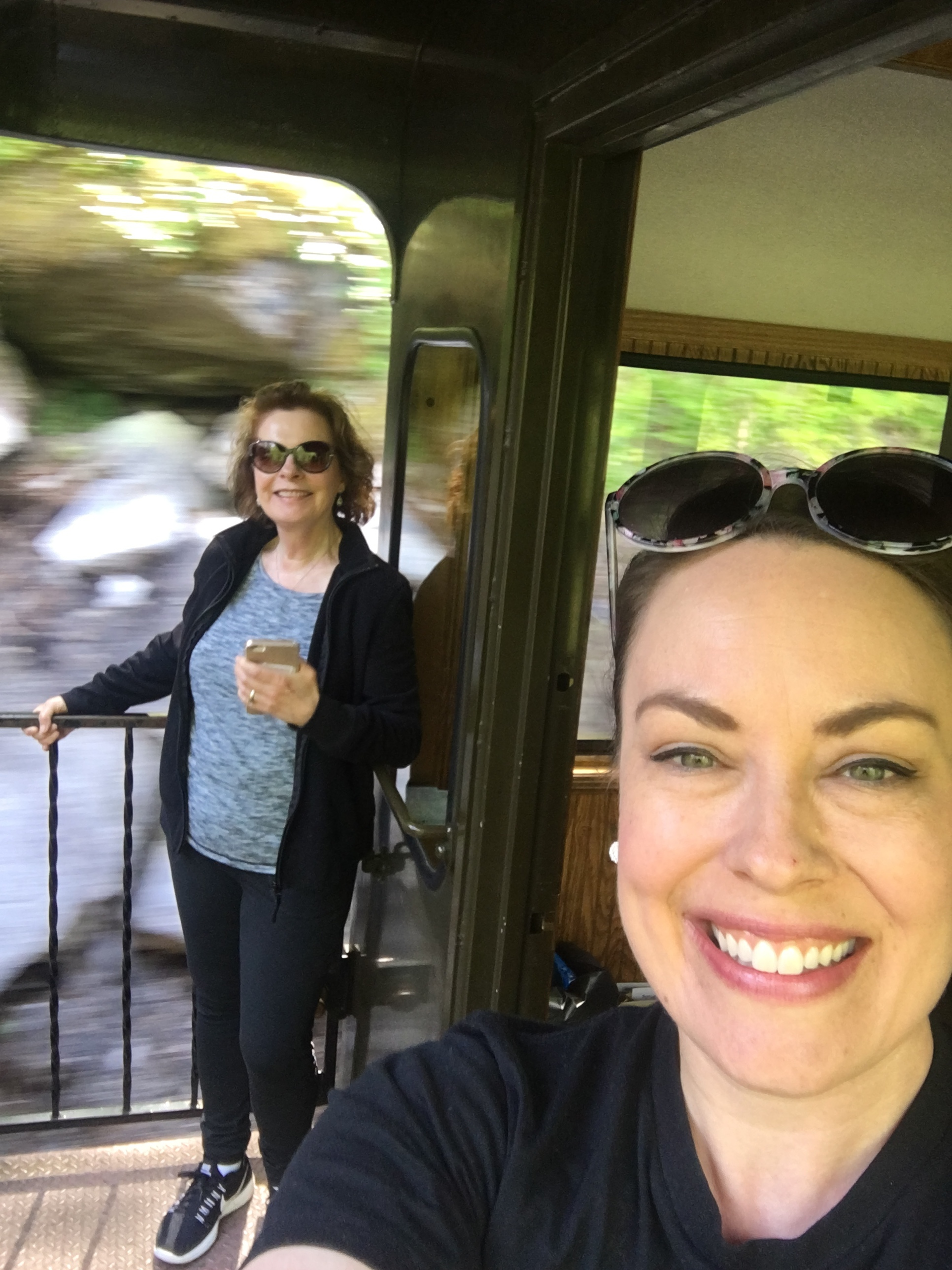 We took a train tour at Skagway, Alaska. Everyone told us that if we only took one excursion on the cruise, this was it! They were right.