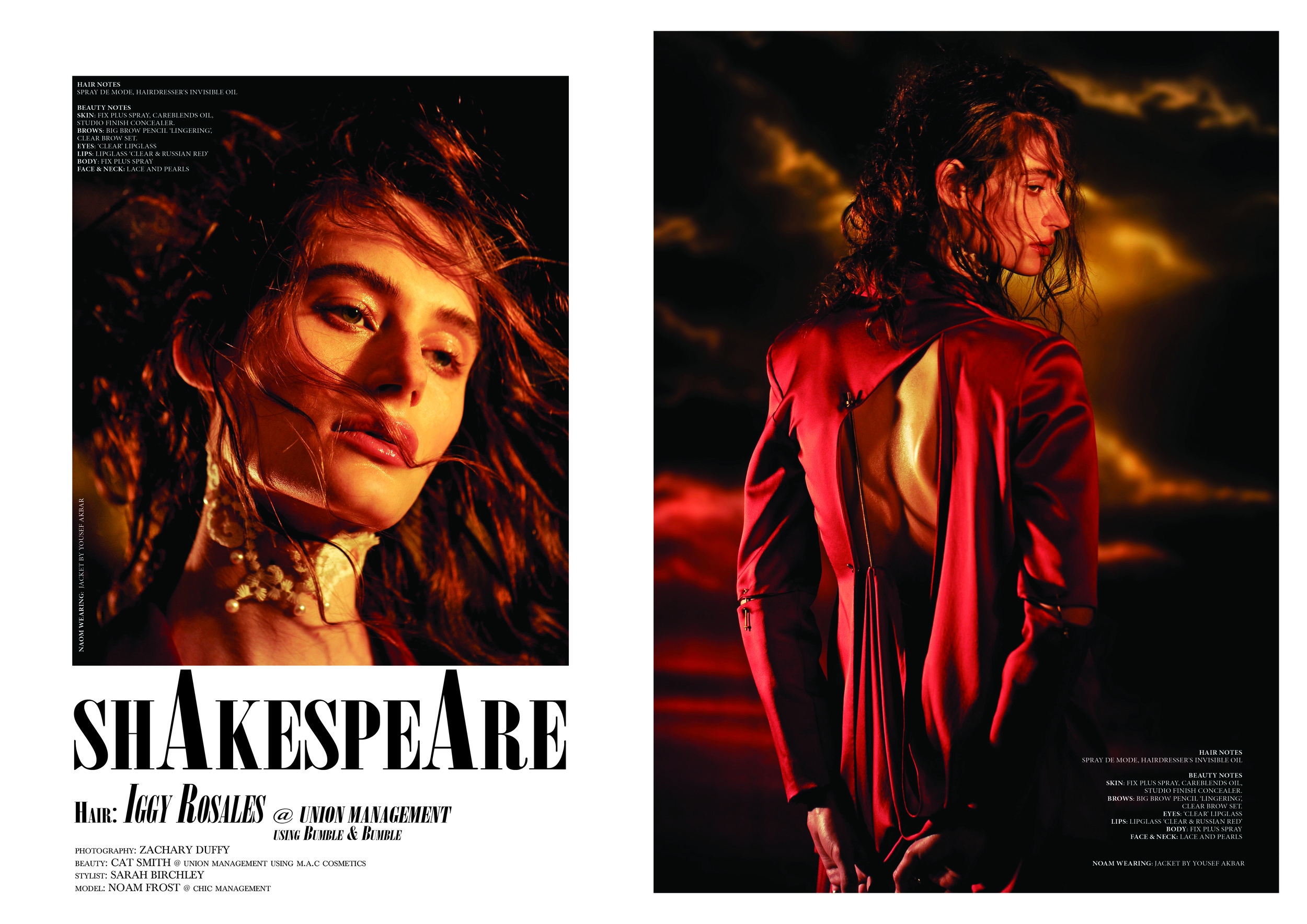 Shakespeare Spread.jpg