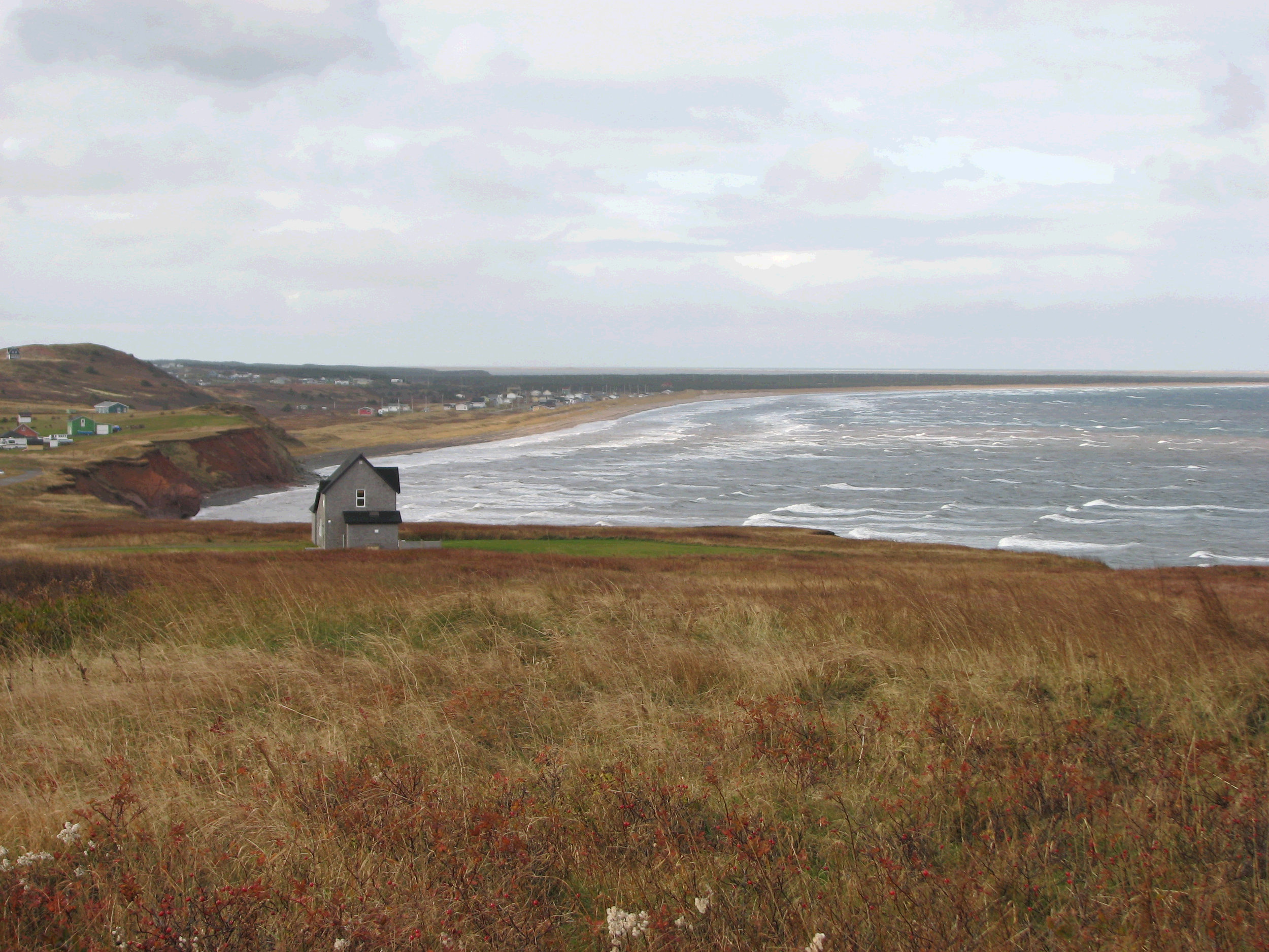 Field at Cliff_Magdalen Islands_CA.jpg