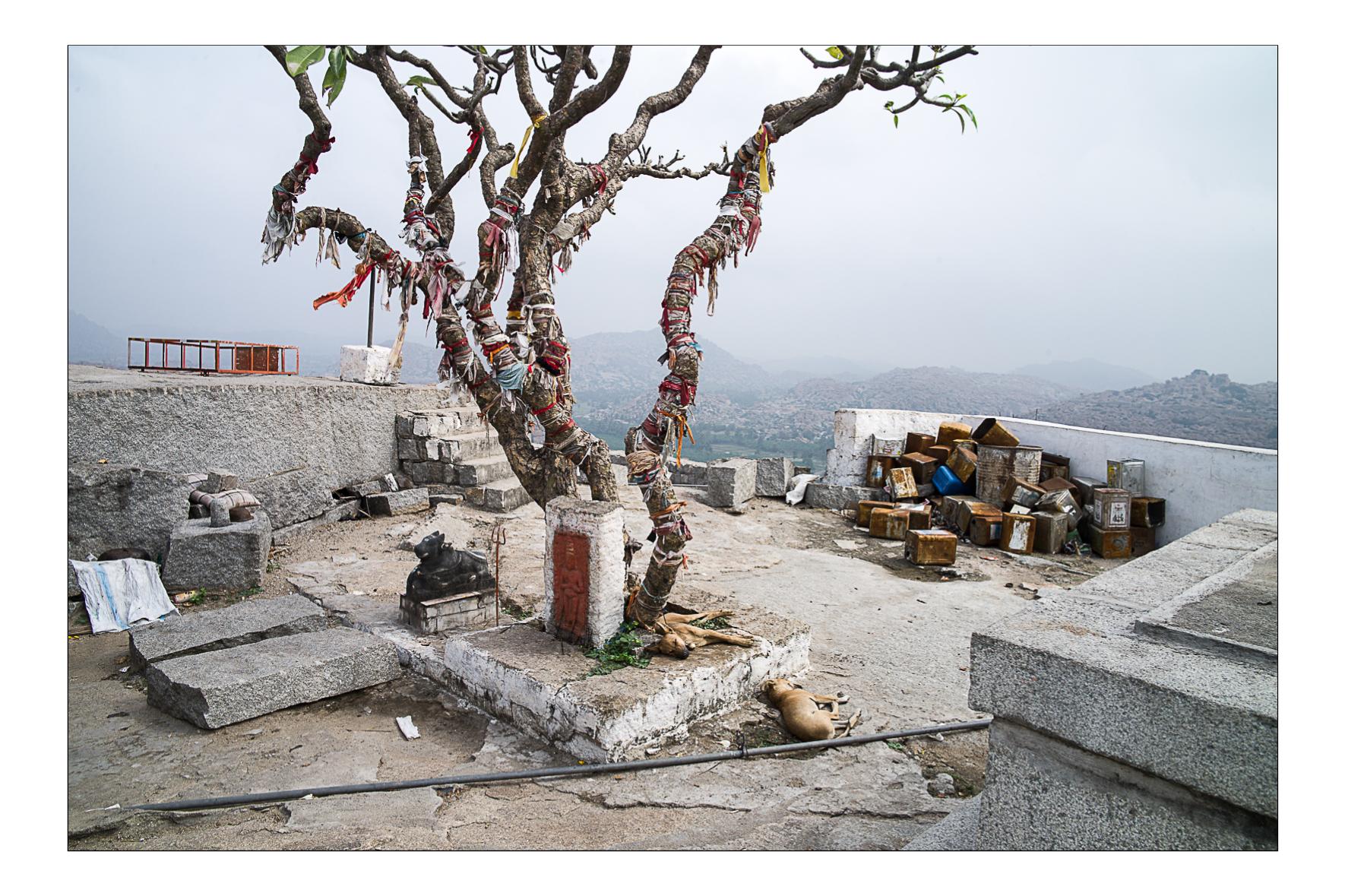Monkey temple, Hampi, Janvier 2010
