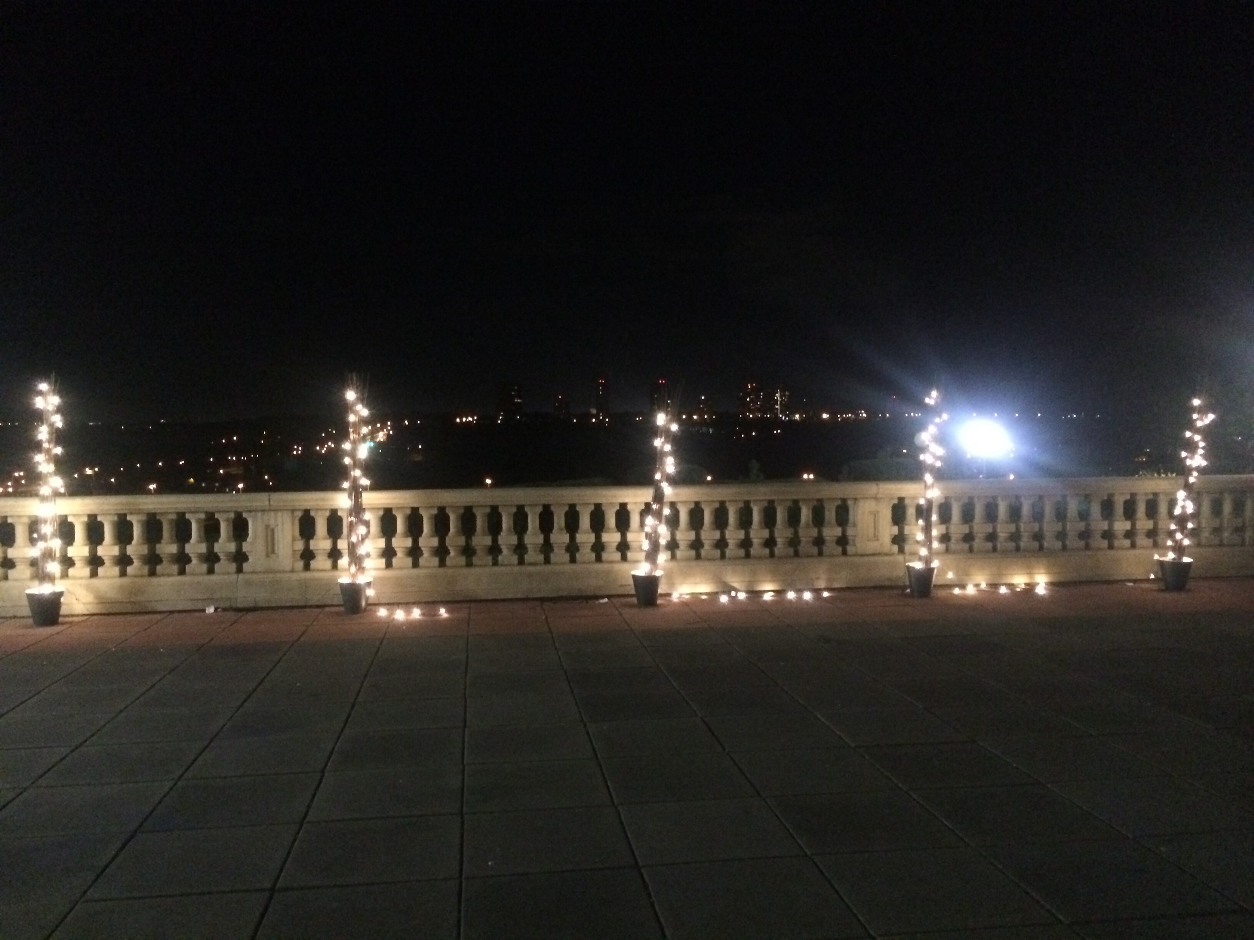 We used 6-feet willow branches and fairy lights to light up the Empire Ballroom's terrace.