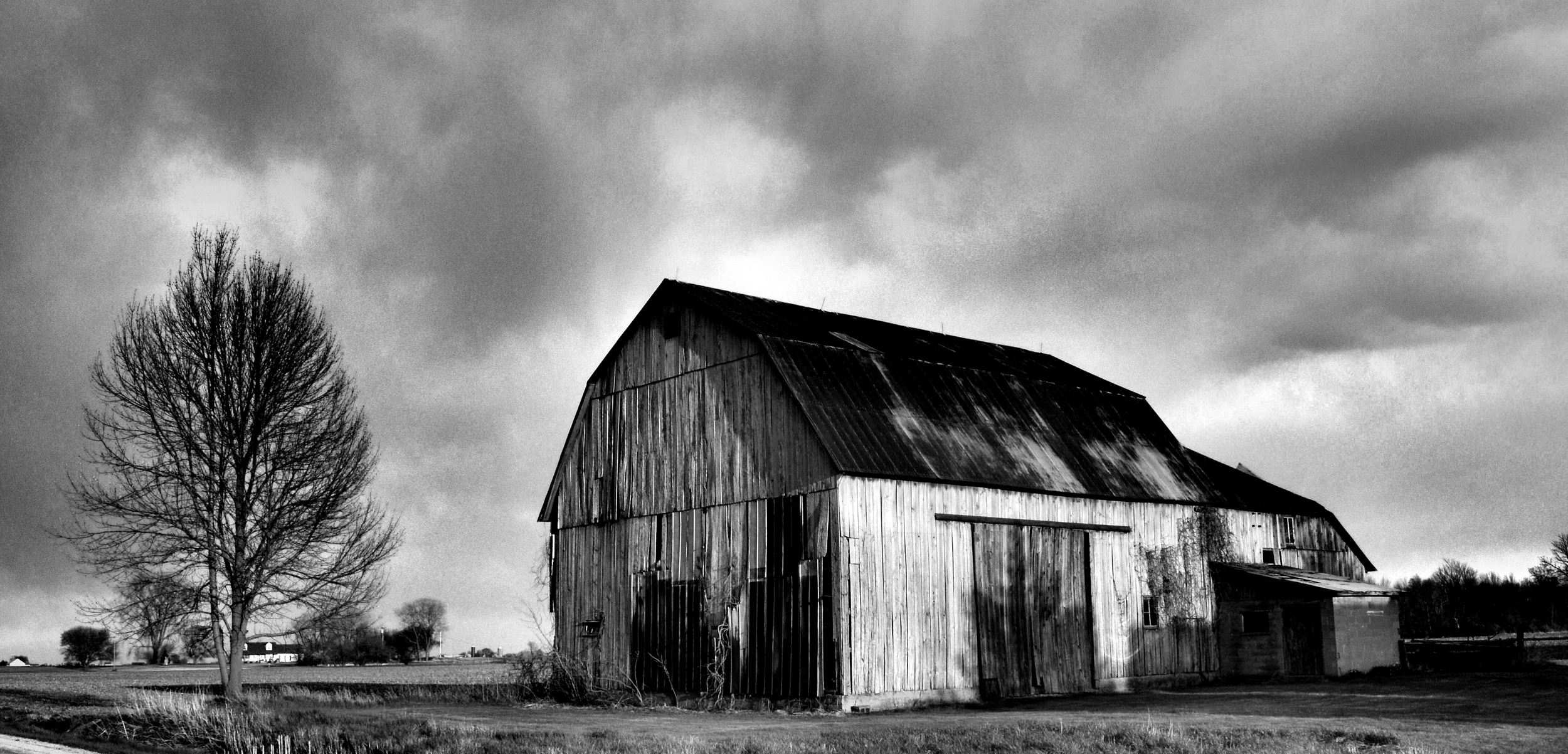 barn in black n white.jpg