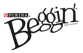 beggin.png