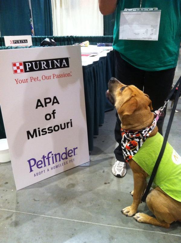 APA_Missouri.jpg