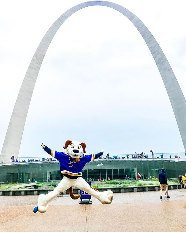 The boys brought home the bacon! 🥓 Hamlet & his crew had SO much fun passing out limited edition @Beggin Strips at the @stlouisblues Stanley Cup Championship rally! 🐶🏒 Did you snag a bag? #tbt #throwbackthursday #stanleycup #stlblues #playgloria #weallbleedblue #stlouis #stlouisblues #stlouisgram
