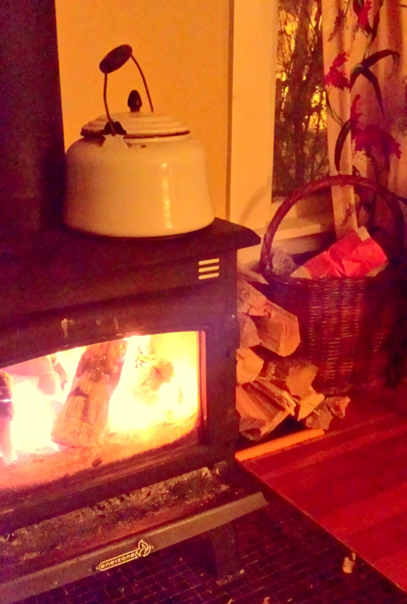 wood fired stove, alternative energy source