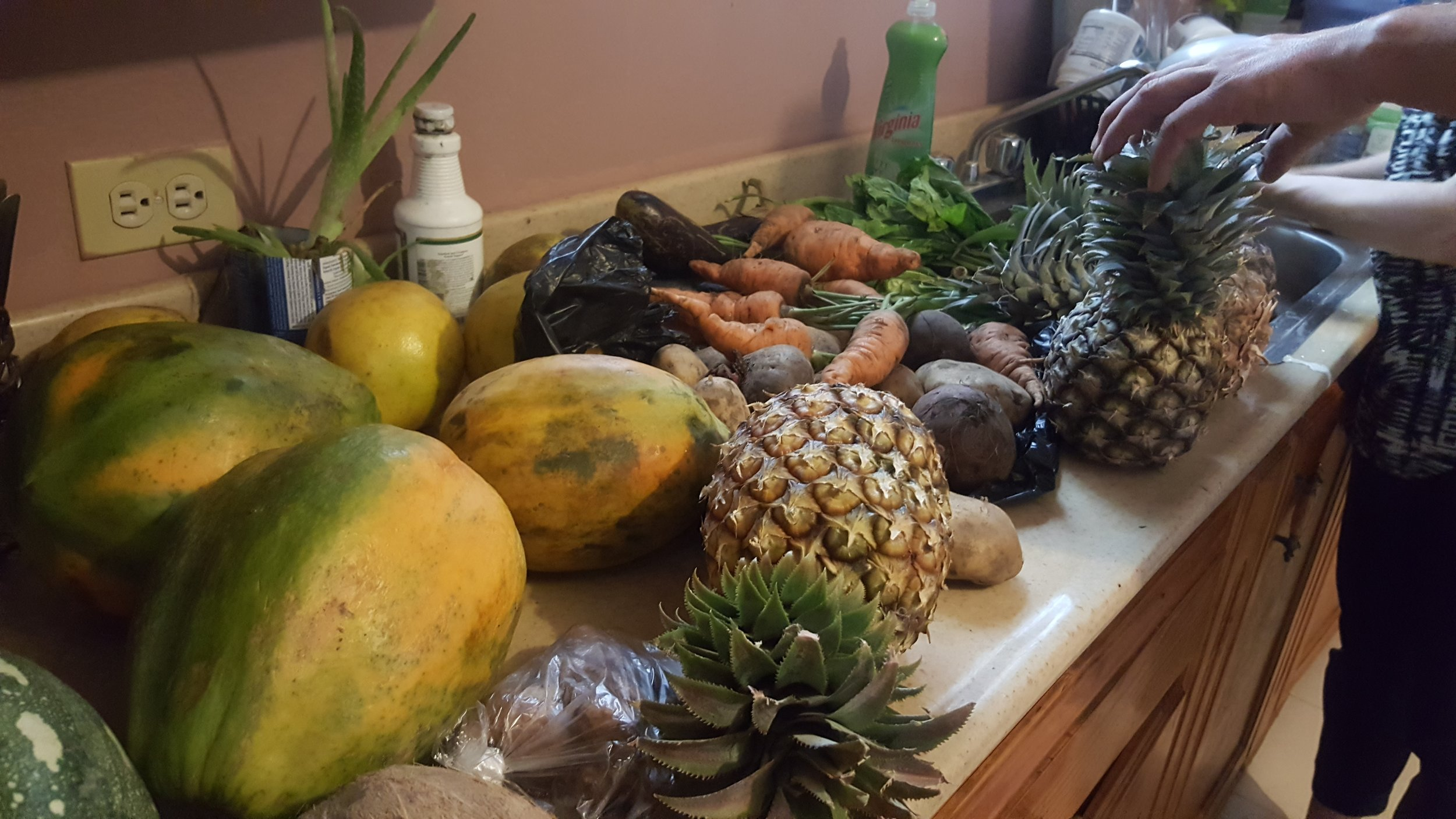 New fruits to try!