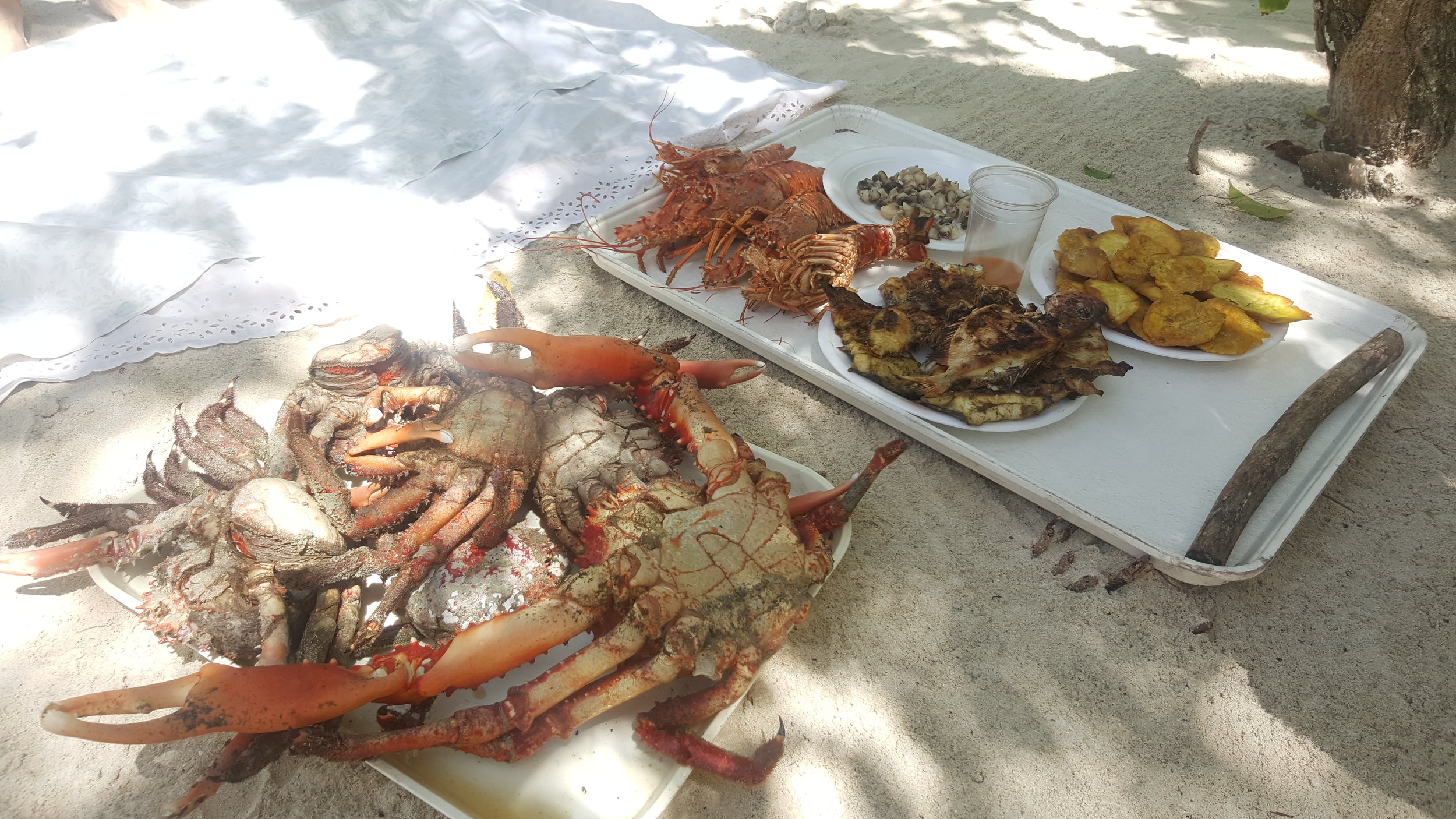 Lunch is ready!  We used a stick and a rock to crack open the crab legs and lobster tails.  They used a very spicy Haitian sauce on the conch which was tasty.  It was very simple - pure seafood, no frills!  Our favorites were the eel and crab.