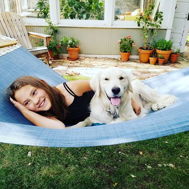 I think #murraysailer would say he has a pretty great life. Hammock time in the backyard, luxurious rides in the bike trailer through the neighborhood, time on the boat. The only troubling aspect of his existence is having to share his home with Milo the cat. . . #murrayandmilo #pleasebefriends