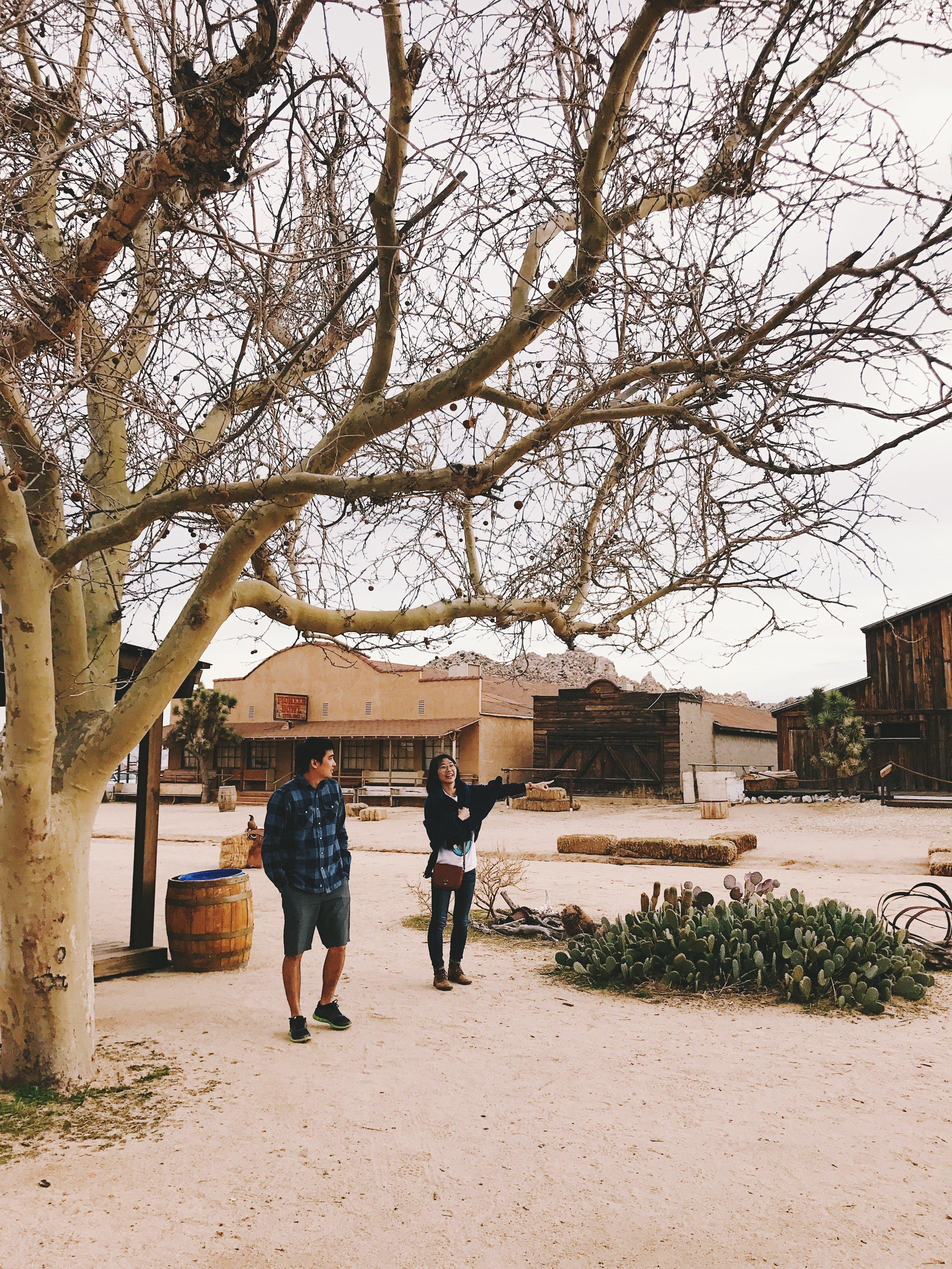 pioneertown joshua tree