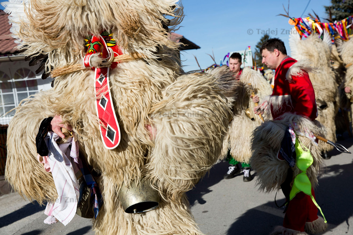 Korant during Fasenk in Zabovci. Koranti jump and twist, and cow-bells ring. It's a loud celebration!
