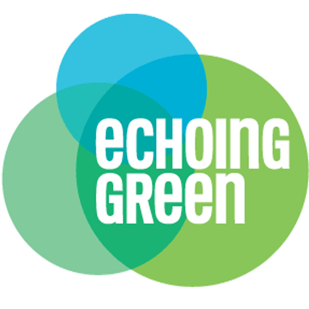 axis-echoing-green.png