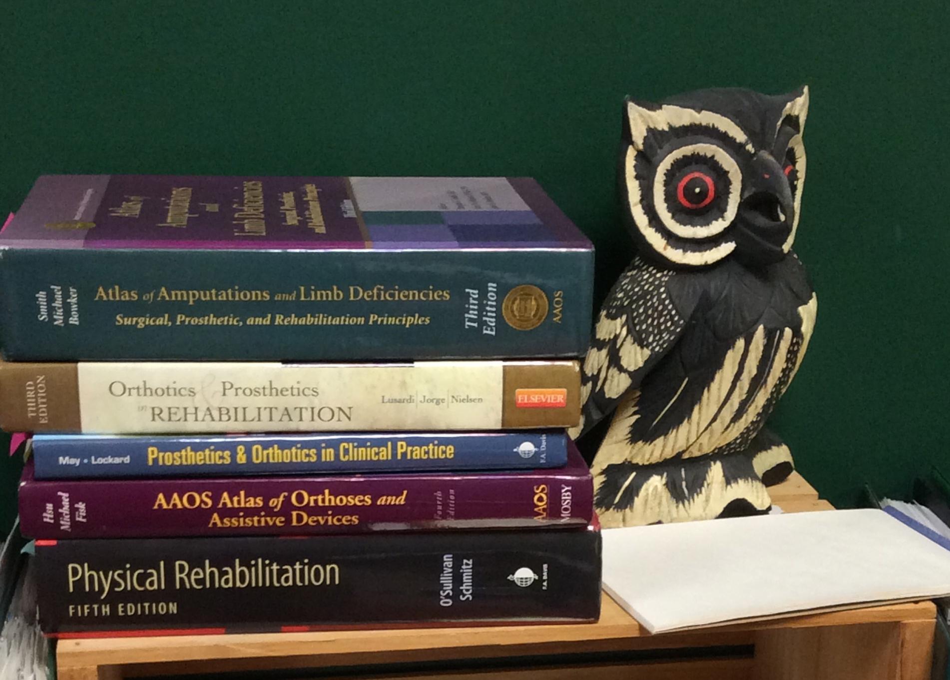 books Owl.jpeg