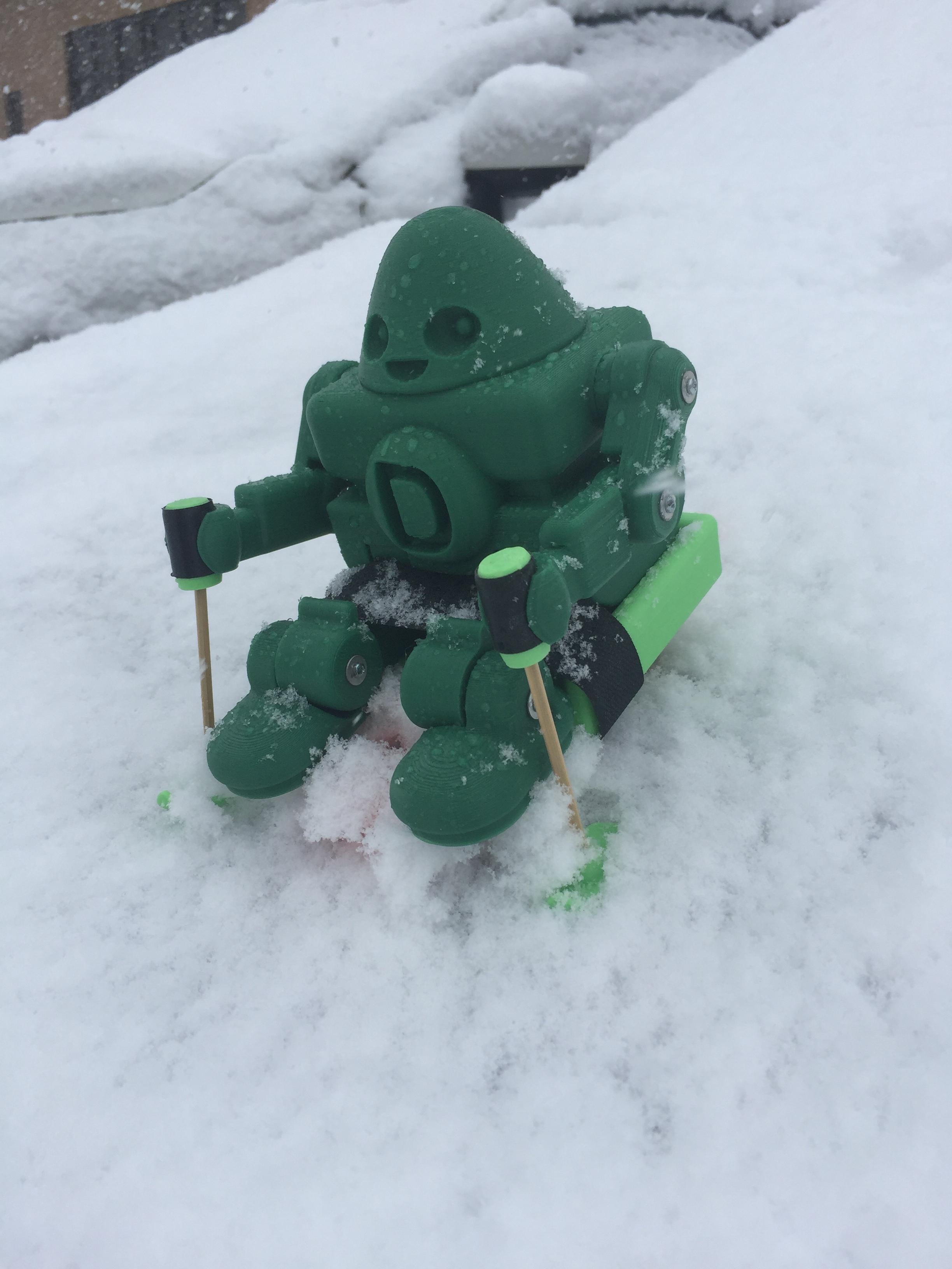 March Snow.JPG