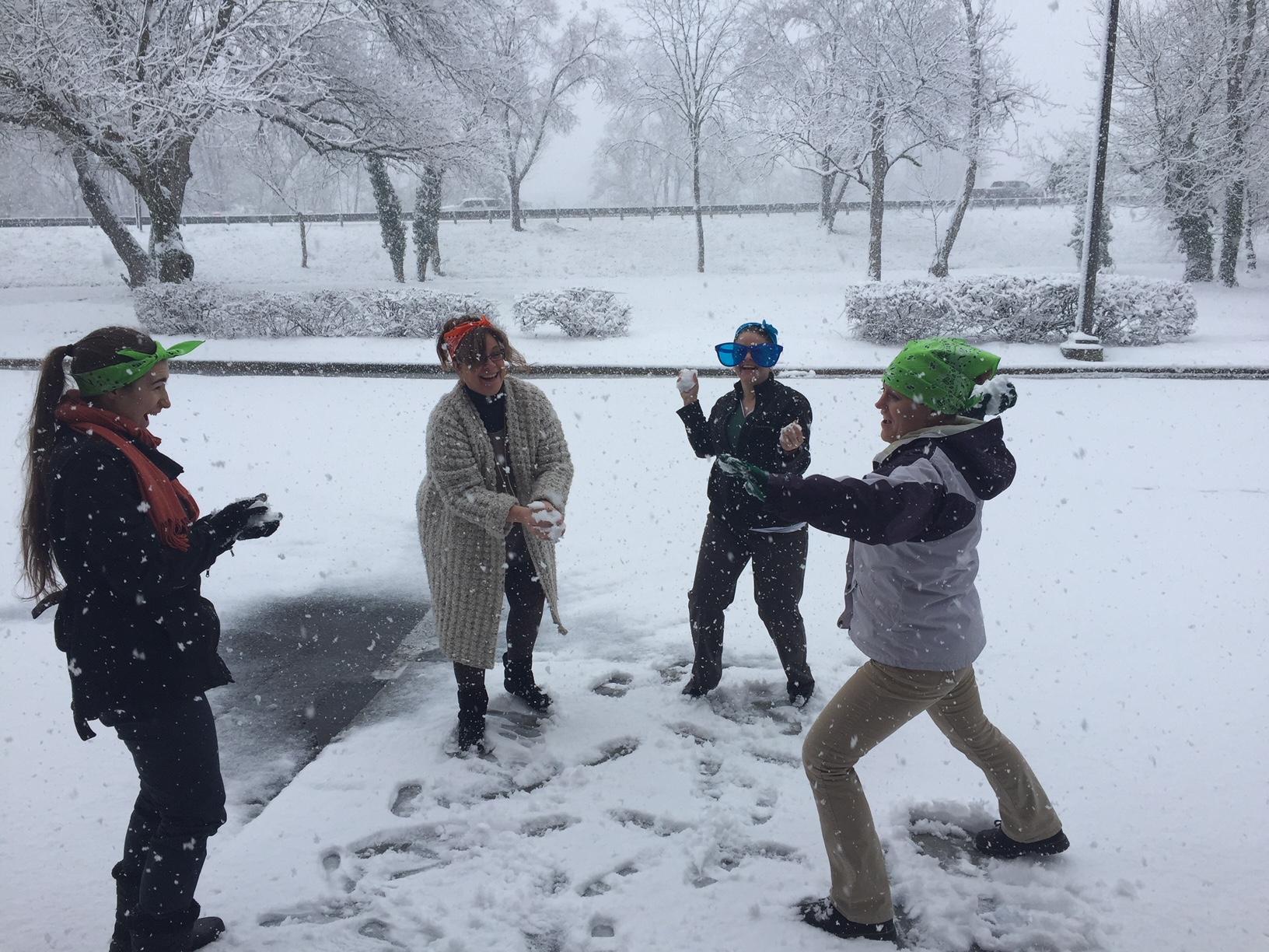 Winter Snow 2018.JPG