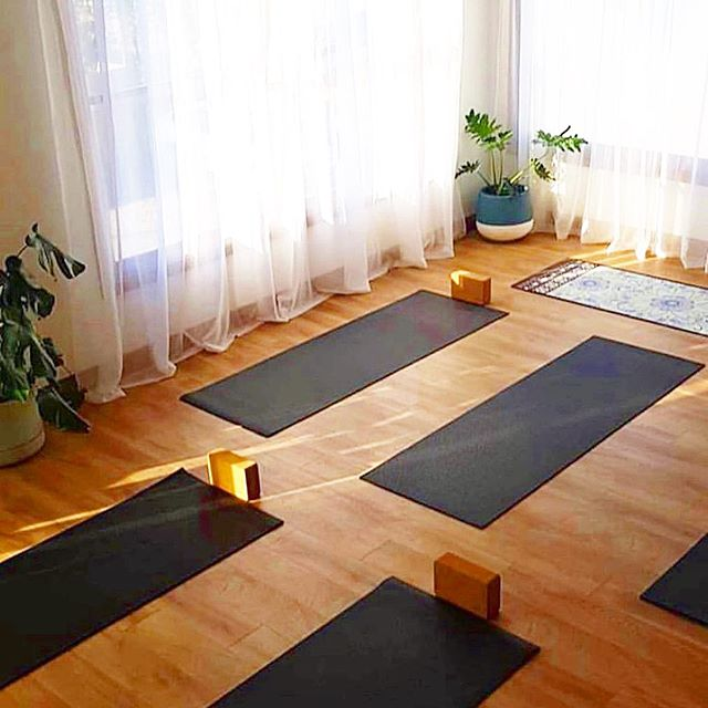 When that morning yoga light hits 🌤💫 [📷: @vinny.yoga] #yogaeveryday #practicewell #workwell