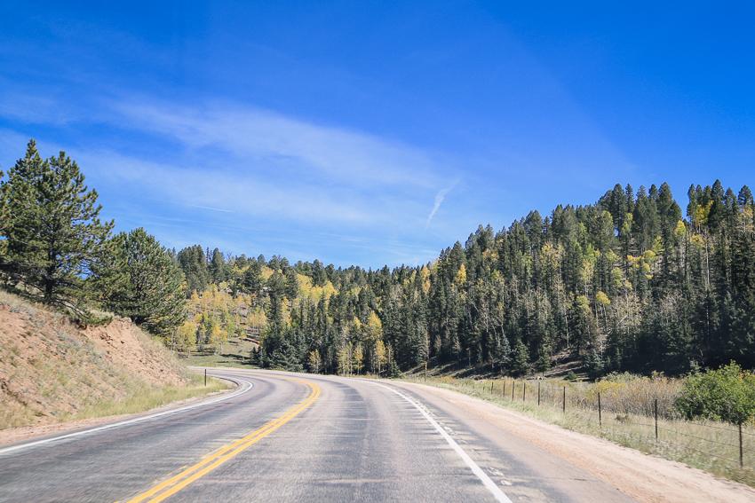 Road Trip-4.jpg