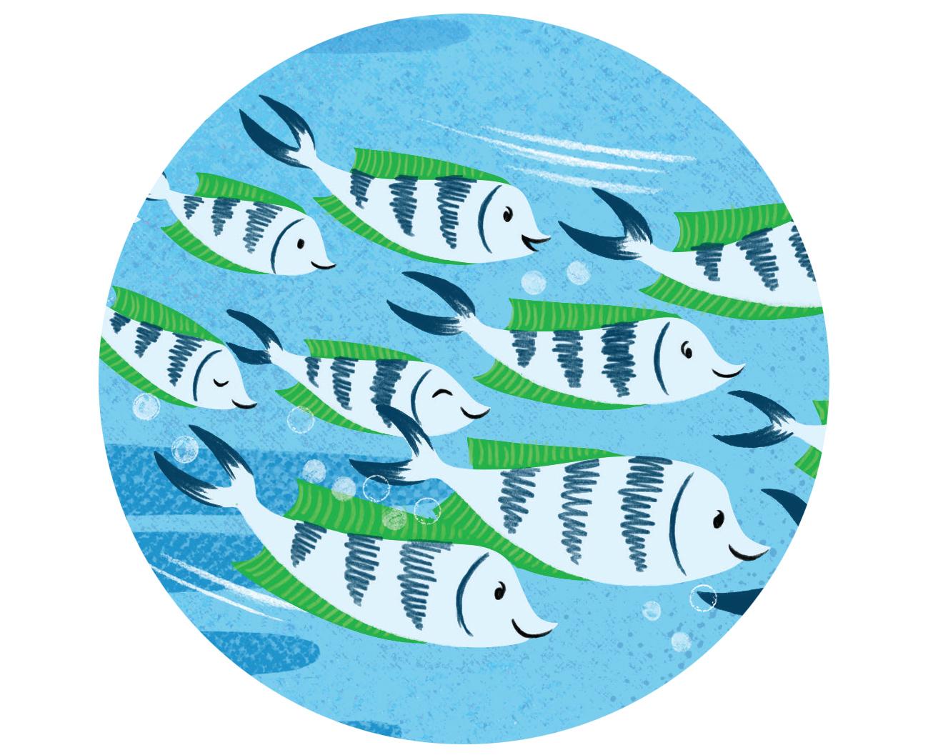 FishSpot.jpg