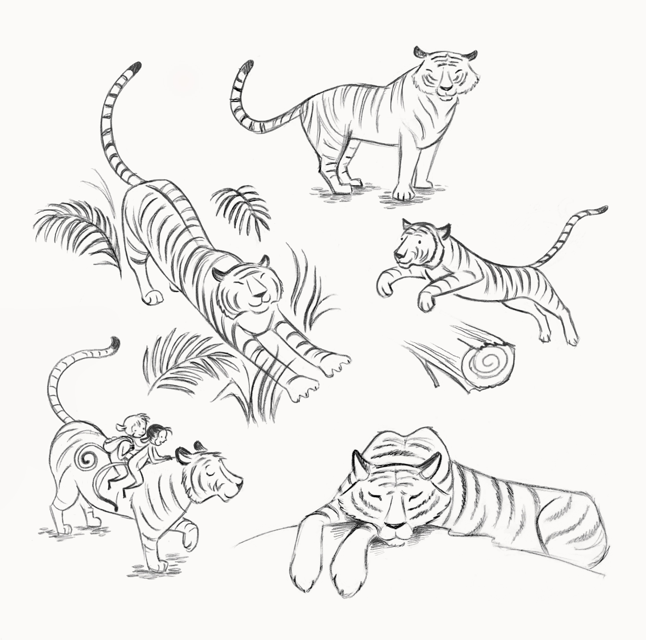 Tiger Character Sketches
