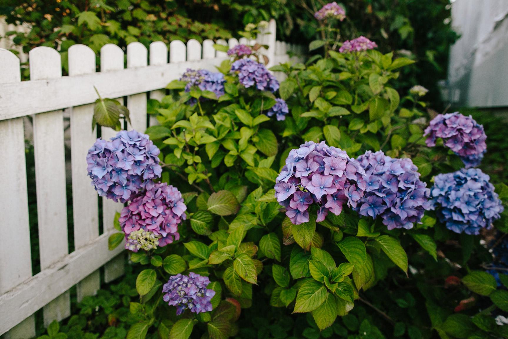 Washington_WeddingPhotographer_010.jpg