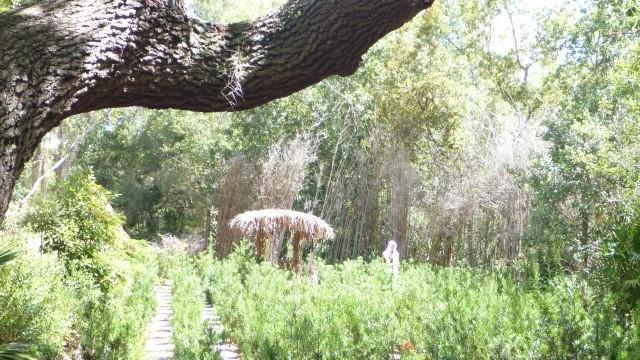 labyrinth4.jpg