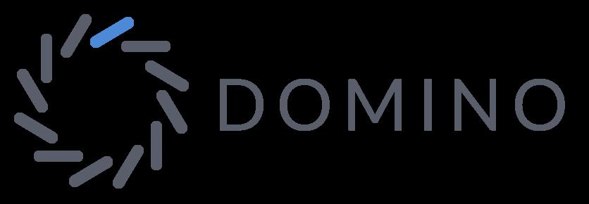 domino-data-lab-logo.png