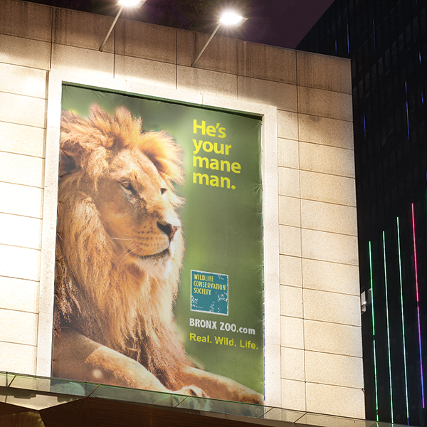lion-poster.png