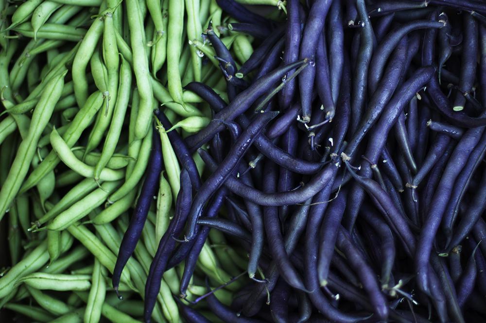 beans_lowRes.jpg