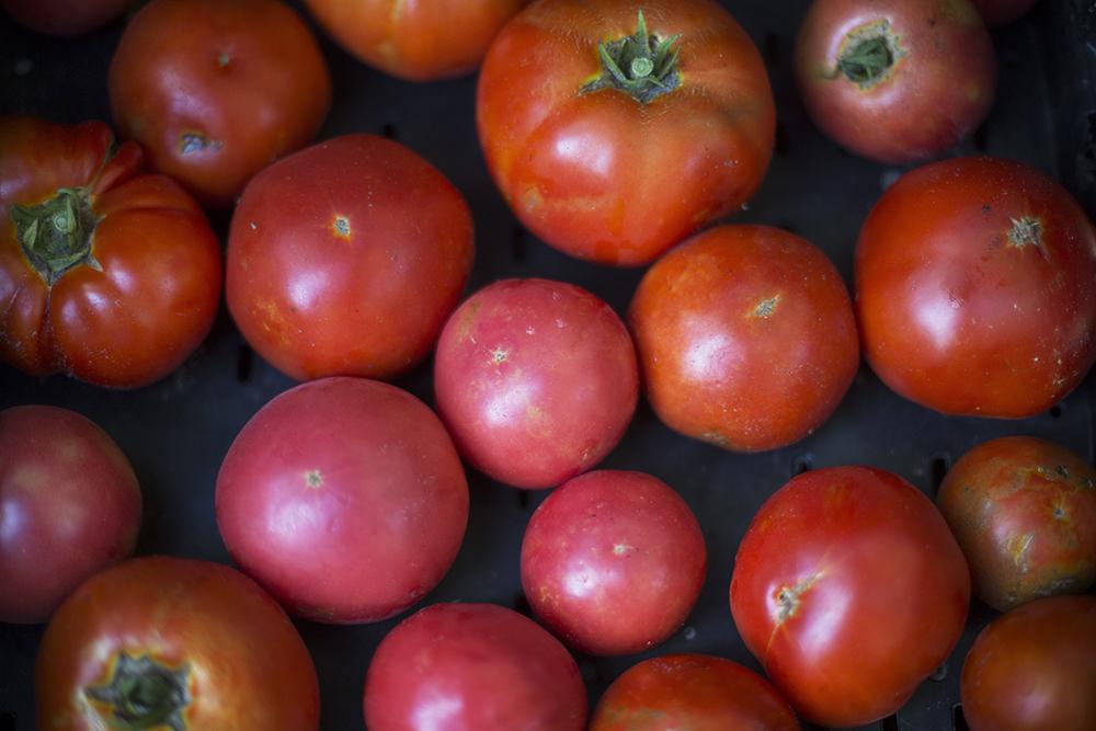 tomatoes_lowRes.jpg