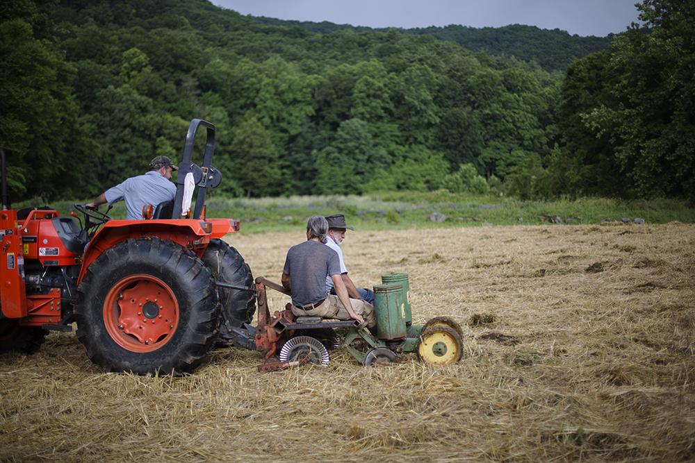 No Till Drill Corn and Sorghum Planting, Canewater Appalachia