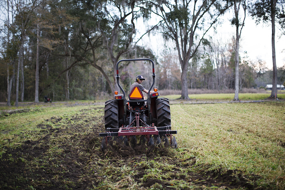 Incorporating Winter Cover Crop