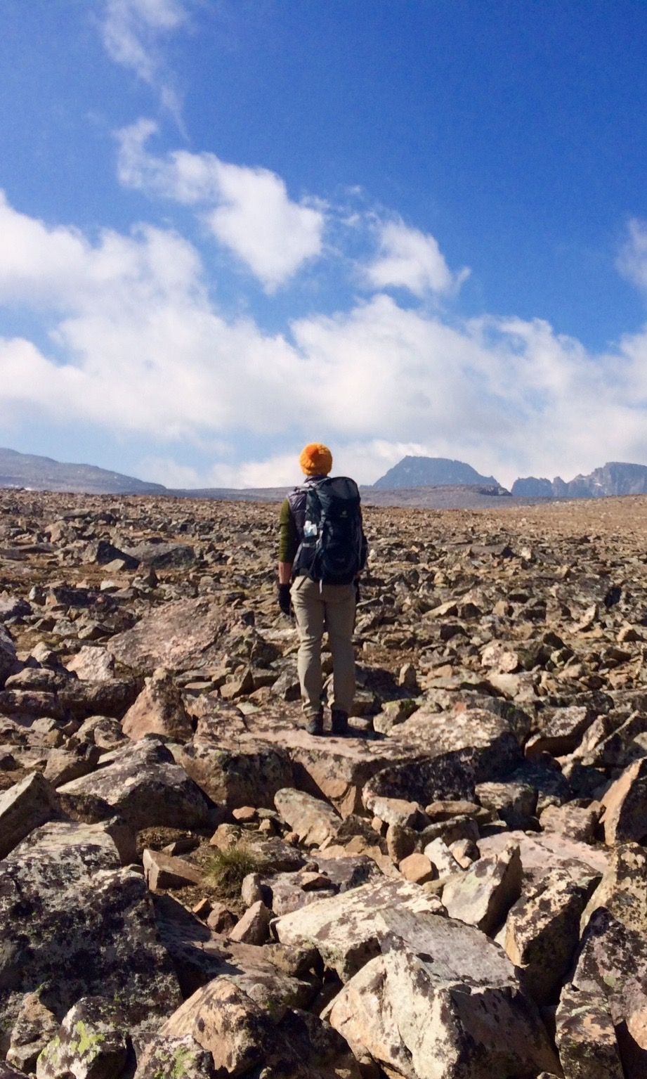 Spencer gazing at Granite Peak in the distance for the first time.  Photo Credit: Vasu Sojitra