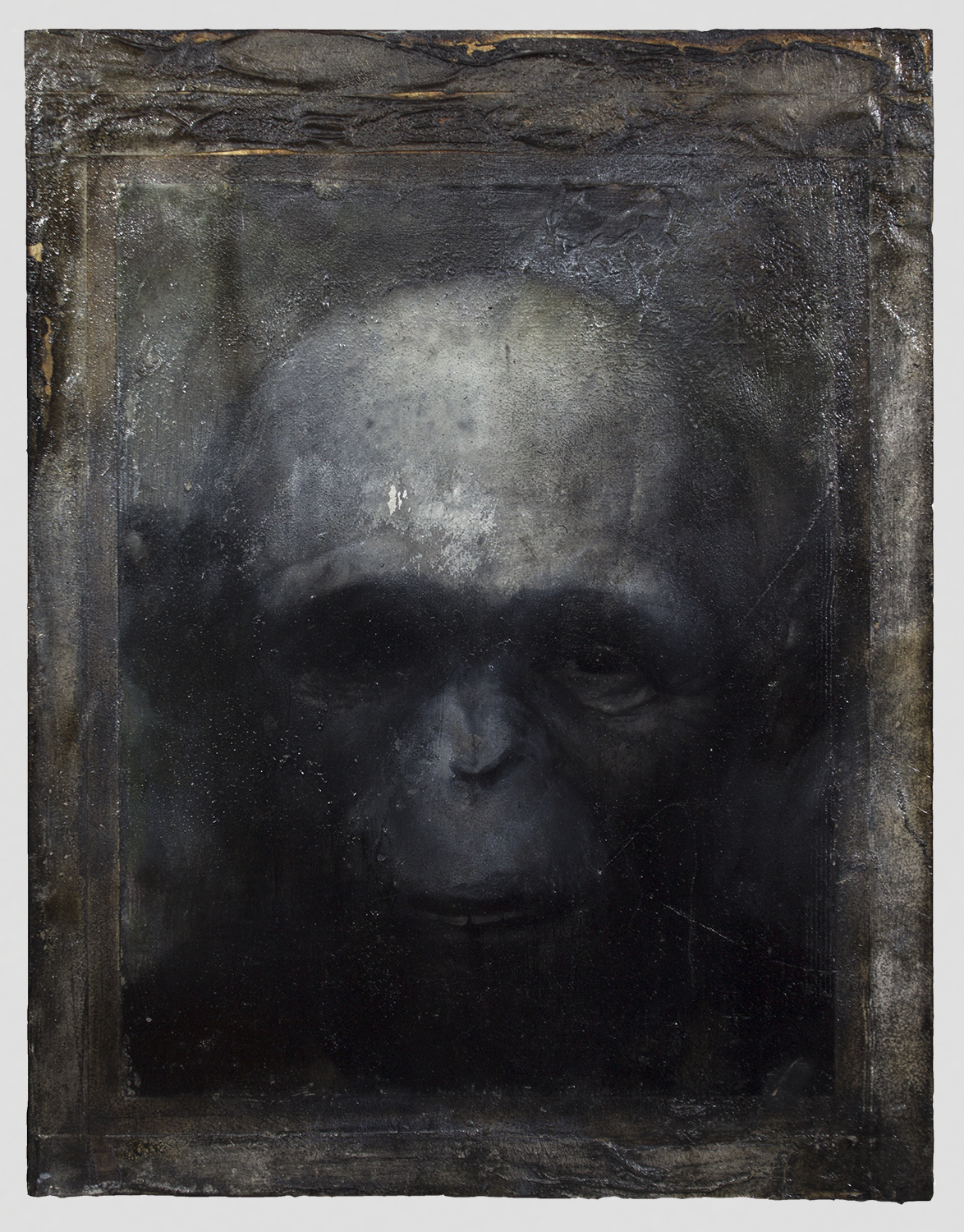 """Hominin Portrait #3  2014 / 18"""" x 14""""  Acrylic, Charcoal, Conte Crayon, Ink, Pastel, Print and Tape on paper on wood panel"""