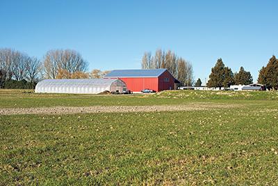 Cropthorne Farm. Photo by Debra Stringfellow