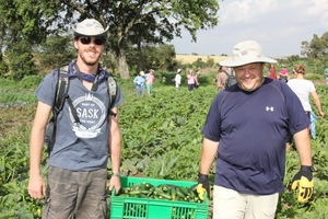 Pictured above, PotashCorp volunteers help with a harvest.