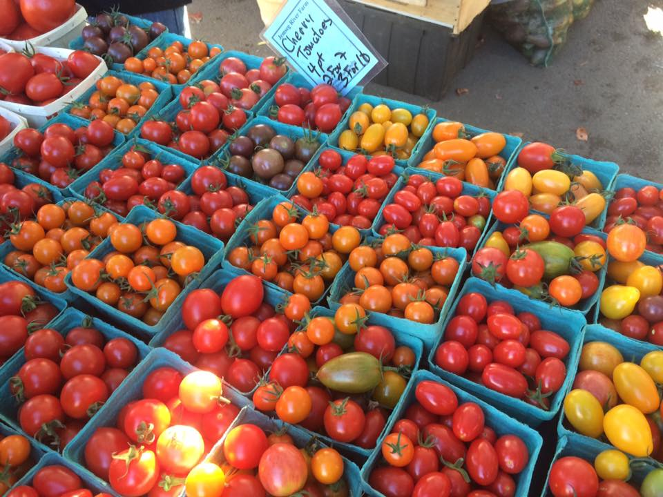 Tomaters.jpg