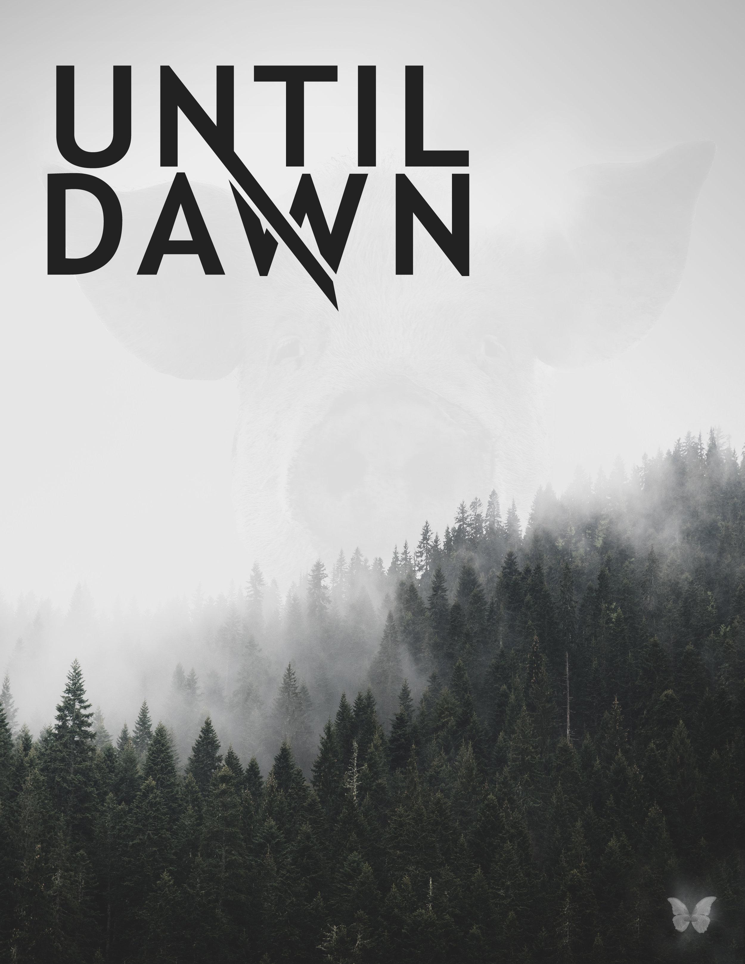 UntilDawn-1WEB.jpg